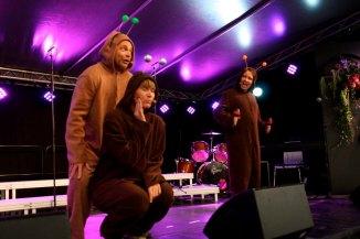 "2013 ""En folkefiende"" Langesund revyfestival (Foto: Langesund Damekor)"